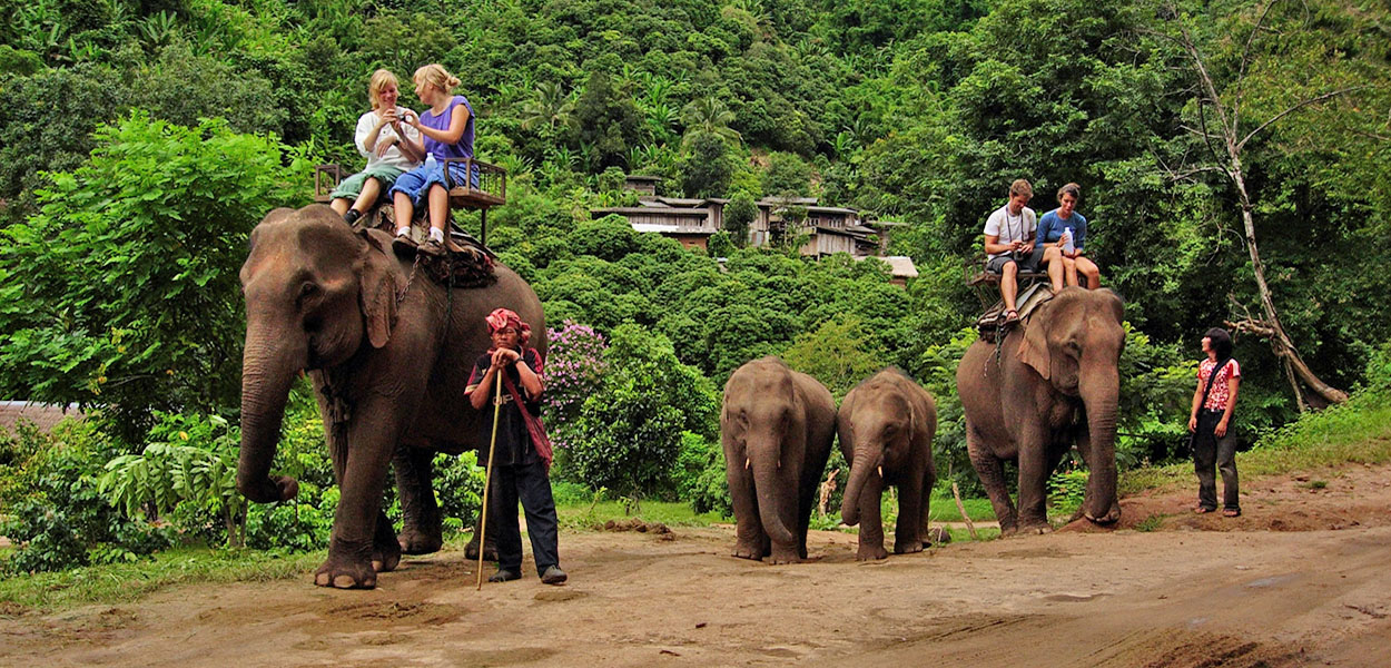 Chiang Mai Local Attractions